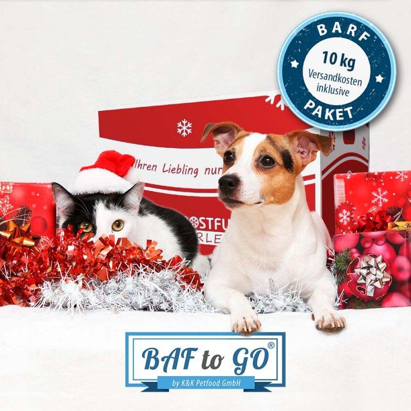 BAF to GO-Weihnachtspaket