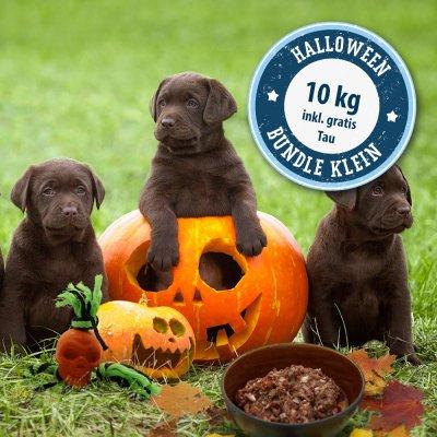 Das kleine Halloween-Bundle