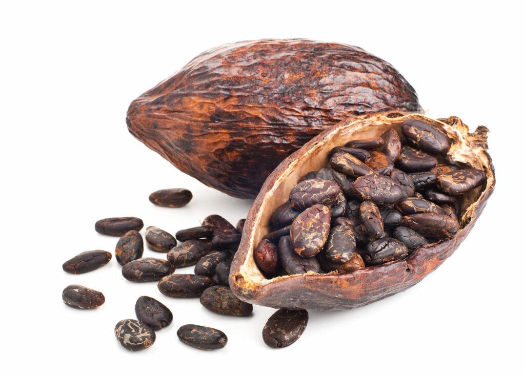Kakaobohne | Frostfutter Perleberg