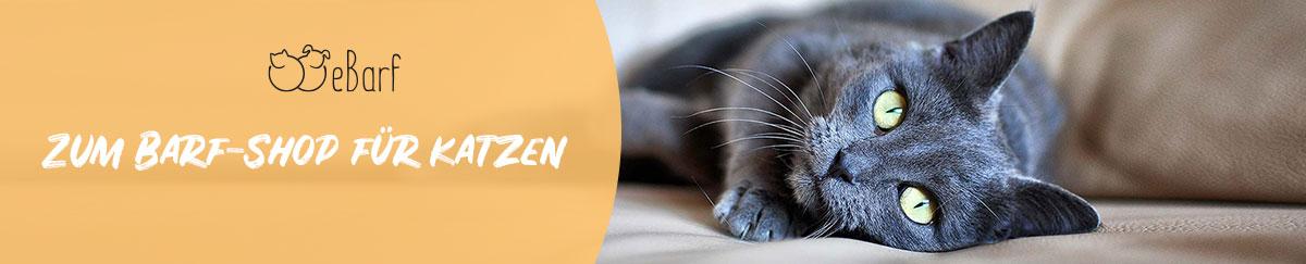 eBarf - Gesunde BARF-Ernährung für Katzen